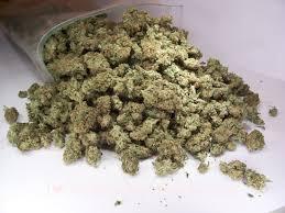 storing marijuana buds