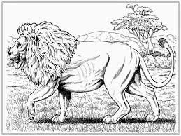 printable 24 realistic lion coloring pages 7499 realistic lion