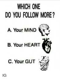Follow Your Heart Meme - which one do you follow more a your mind r b your heart c your