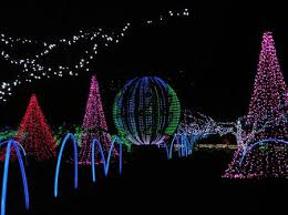 holiday lights tour detroit wild lights at the detroit zoo photo by pat shaw national