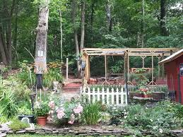 How To Keep Backyard Chickens by How To Keep Wild Birds Away Backyard Chickens