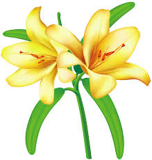 images yellow flowers free download clip art free clip art