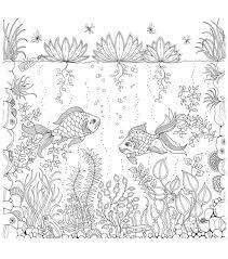 coloring book secret garden coloring book chronicle books joann