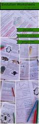 the 25 best hardy weinberg ideas on pinterest mitosis ap