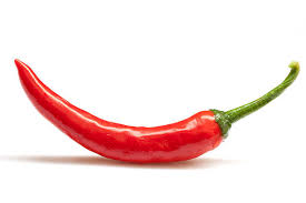 chili pepper pictures images and stock photos istock