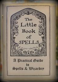 the little book of spells the life of the party