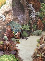 Rock Garden Succulents Rock Garden Amazing Reef Looking Garden Succulents