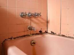 Bathroom Shower Tile Repair Prevent Expensive Bathroom Repairs Promaster 513 724 0539