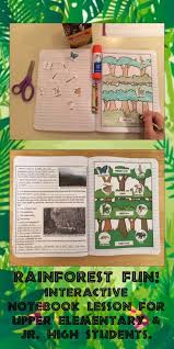 17 best images about rainforest projects on pinterest trees