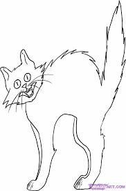 drawn black cat drawing halloween pencil color drawn