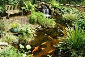 100 backyard fish pond kits how to build a pond part 1