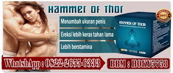 distributor hammer of thor di samarinda 082226556333