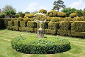 Yew Topiary - yew topiary garden at chirk castle in wales england stock photo
