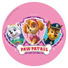 pink paw patrol cake image pink patrol party supplies