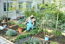 Small Vegetable Garden Design Ideas Backyard Small Vegetable Garden Design Ideas For