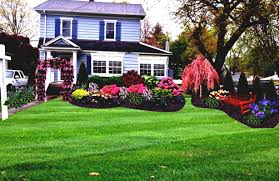 shady front yard landscaping ideas amys office