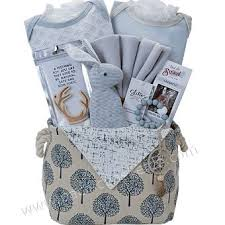 baby gift baskets delivered 39 best baby gift baskets images on baby gifts baby