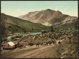 western economic expansion railroads and cattle us history ii