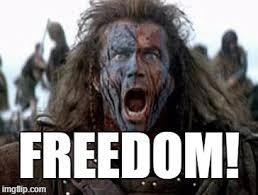 Braveheart Freedom Meme - freedom imgflip
