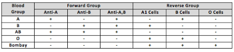 full text bombay blood phenotype laboratory detection and