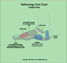 Foot Anatomy Nerves Reflexology Foot Map Diagrams U0026 Charts Including Step By Step