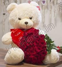 big teddy 50 roses with a big teddy