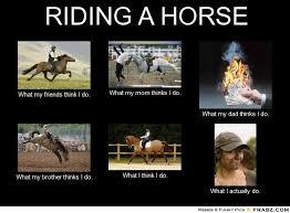 Horse Riding Meme - horse riding meme gallery horse stuff pinterest horse riding