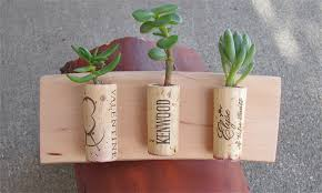 wall succulent planter gardens and landscapings decoration