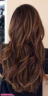 hair colors highlights and lowlights for women over 55 hair style image hair colors ideas color trends summer
