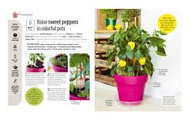 plants native to america indoor edible garden creative ways to grow herbs fruits and