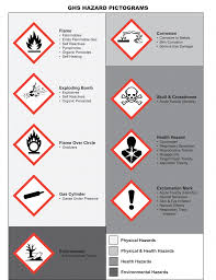 ghs hazard pictograms 791x1024 what you need to teach your