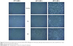 full text cytoprotective effects of cerium and selenium