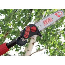 oregon battery powered cordless pole saw ps250