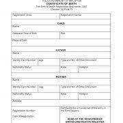 dog birth certificate template blank pet puppy template masir