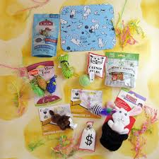 purr packs december 2016 subscription review u0026 coupon fun and