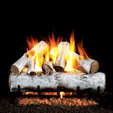 Fireplace Stores In Delaware by Real Fyre White Birch Vented Gas Log Set Learnshopenjoy Bedroom