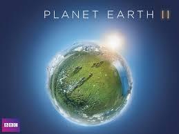 ipad earth wallpaper missing amazon com planet earth ii david attenborough amazon digital