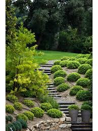 Steep Sloped Backyard Ideas Best 25 Steep Hillside Landscaping Ideas On Pinterest Steep