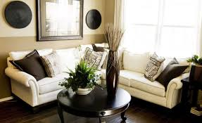 white sofa and black round living table also houseplant also black