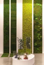 How To Make A Moss Wall by Best 20 Moss Wall Ideas On Pinterest Moss Wall Art Moss Art