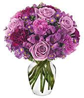 Purple Carnations Purple Carnations Purple Carnation Delivery Fromyouflowers