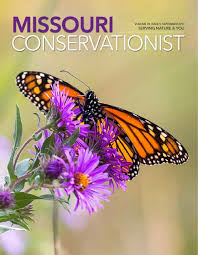 the butterfly effect missouri department of conservation