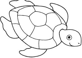 sea turtle clipart outline clipartxtras