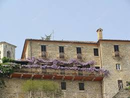 old house entwined with climbing plants u2014 stock photo larisa13