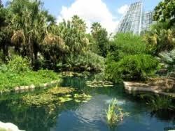 San Antonio Botanical Gardens Events Family Adventure Garden Ribbon Cutting Grand Opening At San