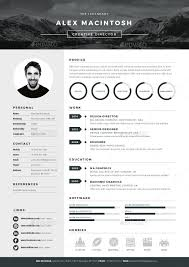 Sample Federal Government Resumes by Best 25 Executive Resume Template Ideas Only On Pinterest