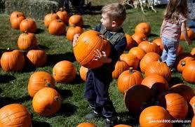 around the town cornucopia fall festival set for saturday local