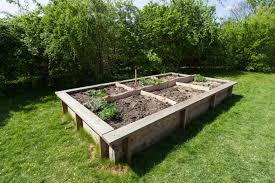 raised vegetable garden kits home garden inspiration
