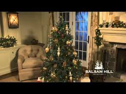 balsam hill color clear lights balsam hill fraser fir christmas tree multi color lights medium