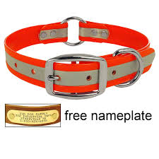 buy collars free brass name id plate w most collars